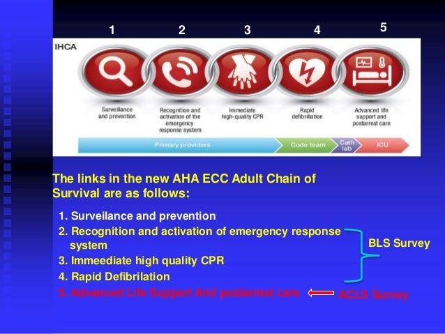 Bantuan Hidup Dasar (2015 AHA Guideline)