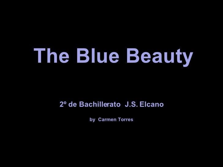 The Blue Beauty 2º de Bachillerato  J.S. Elcano by  Carmen Torres