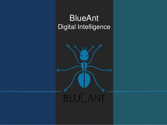 BlueAnt Digital Intelligence