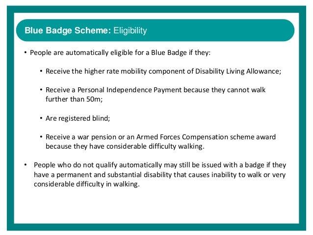 Blue Badge Overview Sheenagh Reynolds July 2014