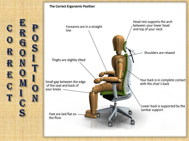 Astounding Bluebell Ergonomics Office Chair Manufacturer Home Remodeling Inspirations Cosmcuboardxyz