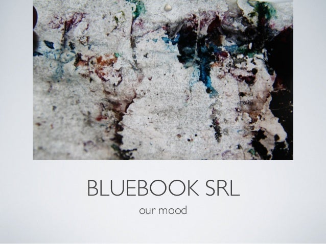BLUEBOOK SRL our mood