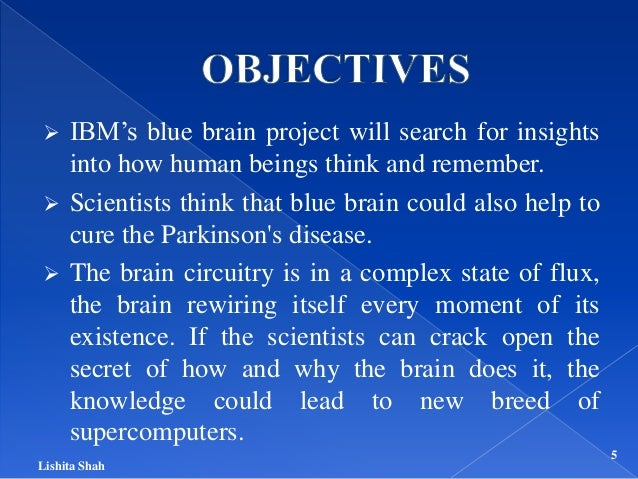 blue brain project ppt