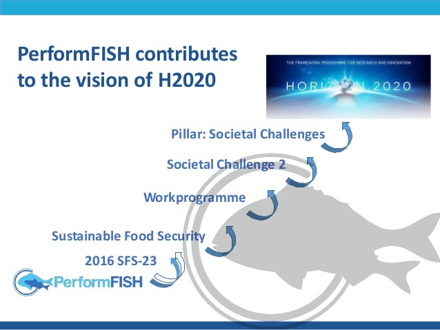 PerformFISH: Consumer Driven Production - Integrating Innovative Approaches for Competitive and Sustainable Performance Slide 2