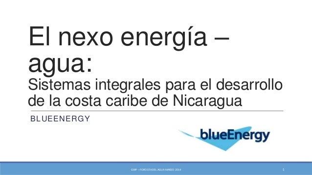 El nexo energía – agua: Sistemas integrales para el desarrollo de la costa caribe de Nicaragua BLUEENERGY GWP – FORO DÍA D...