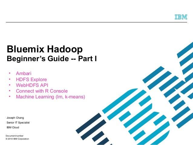 Bluemix hadoop beginners Guide part I