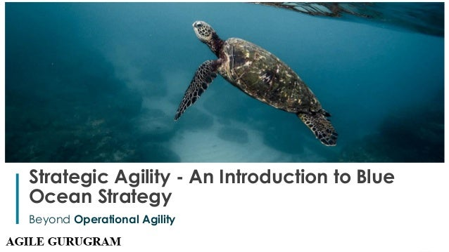 1 Strategic Agility - An Introduction to Blue Ocean Strategy Beyond Operational Agility