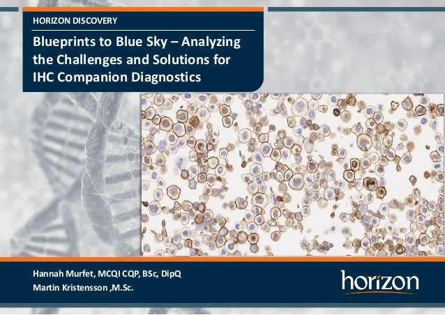 HORIZON DISCOVERY Blueprints to Blue Sky – Analyzing the Challenges and Solutions for IHC Companion Diagnostics Hannah Mur...