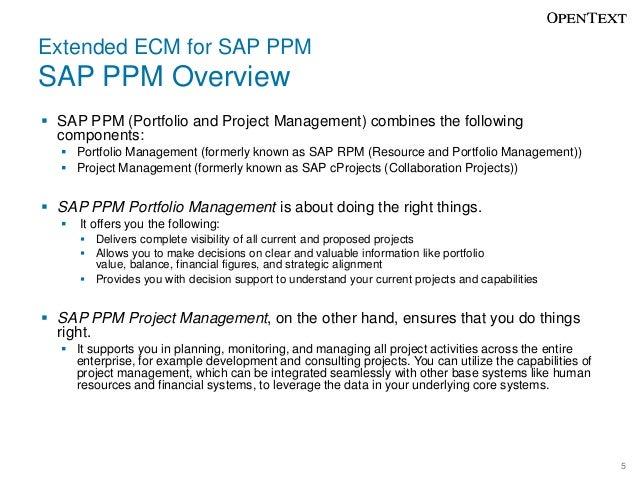 sap portfolio and project management pdf