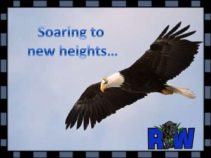 Soaring to <br />new heights…<br />