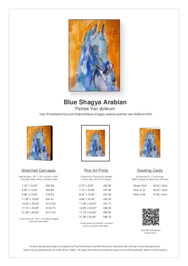Blue Shagya ArabianPatries Van dokkumhttp://fineartamerica.com/featured/blue-shagya-arabian-patries-van-dokkum.htmlStretch...