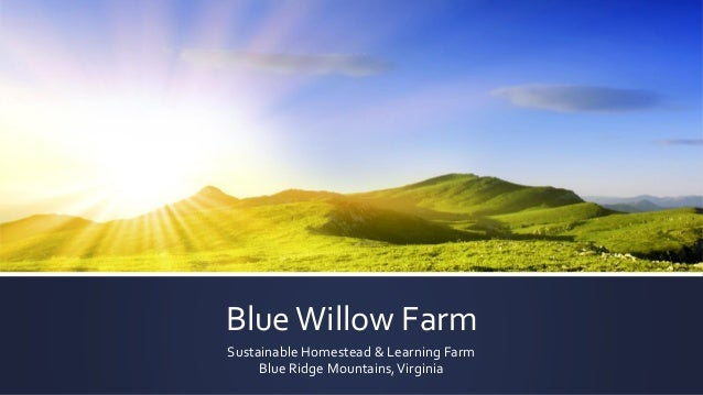 BlueWillow Farm Sustainable Homestead & Learning Farm Blue Ridge Mountains,Virginia