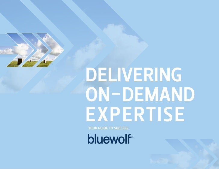 Delivering On-DemanD expertise YOur guiDe tO success