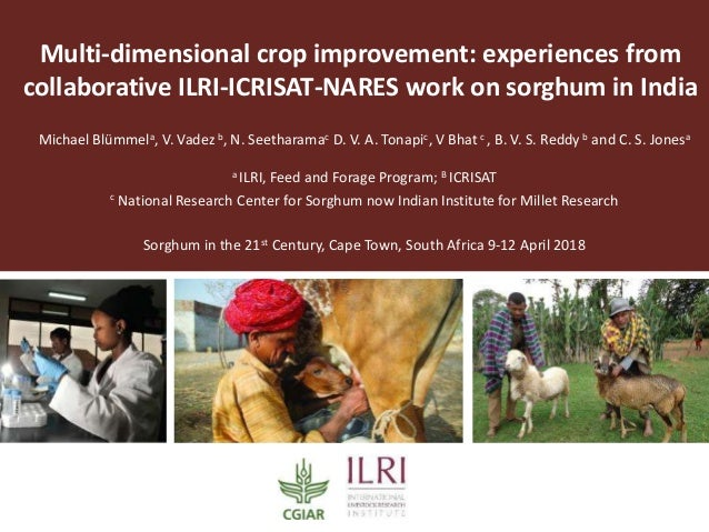 Multi-dimensional crop improvement: experiences from collaborative ILRI-ICRISAT-NARES work on sorghum in India Michael Blü...