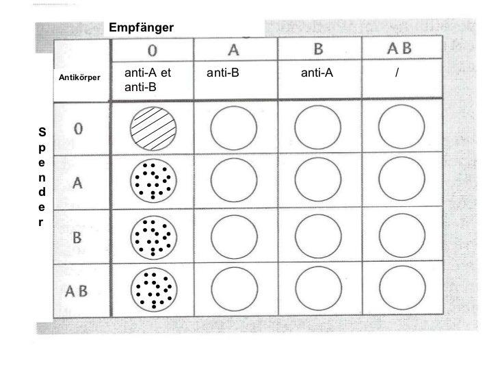 Blutgruppe 0 rh positiv