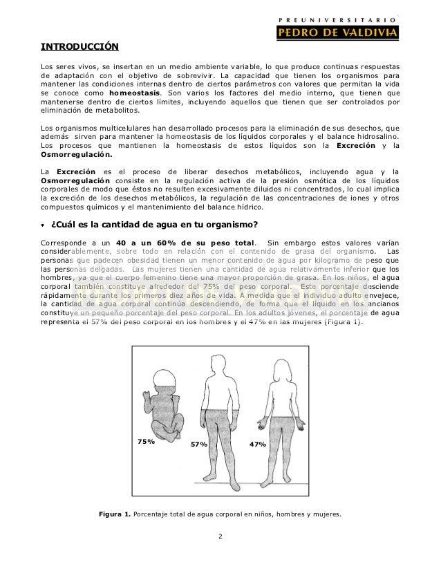 PDV: Biologia mencion Guía N°26 [4° Medio] (2012)
