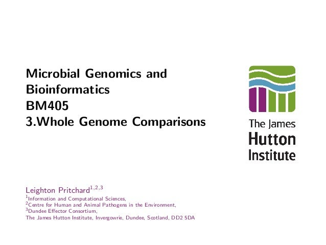 human genome term papers The last remaining website for students offering 1000's of free term papers, essays, book reports & research papers biotechnology the human genome project this 32 page paper considers the human genome project, paying particular attention to the role that computer technology has played through its existence.