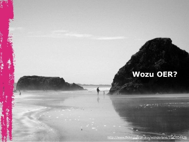 Wozu OER? http://www.flickr.com/photos/wonderlane/5543854426