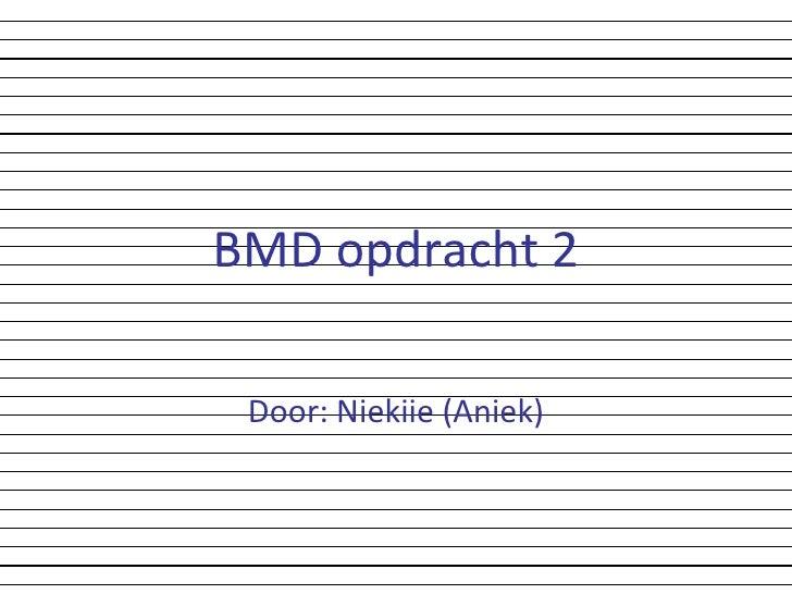 BMD opdracht 2 Door: Niekiie (Aniek)