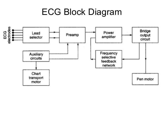 Ec09 L25 Biomedical Instrumentation Module 1 likewise 480v Wye Connection 12 Lead Motor Wiring Diagram together with Conductive Wires further Htm as well What Function Deltoid Muscle. on 12 lead ecg circuit diagram 3