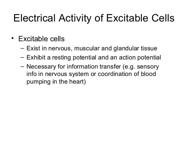 ... 5. Electrical Activity Of Excitable ...
