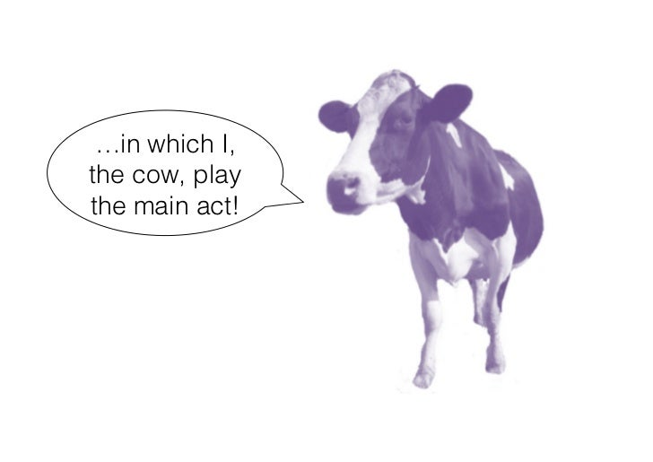 …in which I, the cow, play the main act!