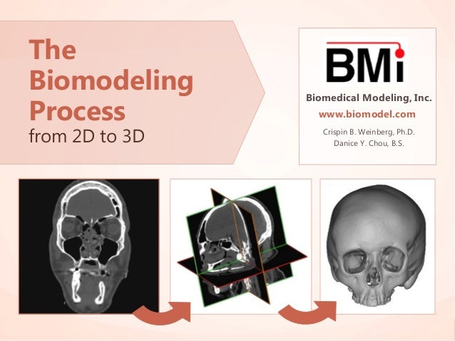 The Biomodeling Process from 2D to 3D  Biomedical Modeling, Inc. www.biomodel.com  Biomedical Modeling, Inc. www.biomodel....