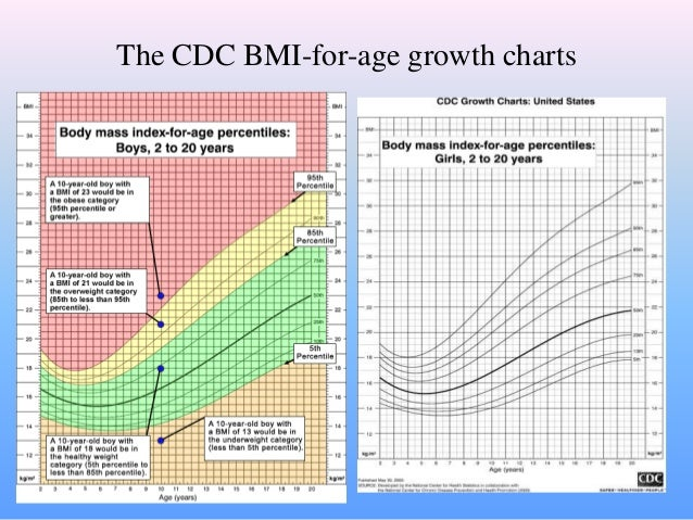 bmi for age growth chart: Child bmi chart cdc obesity and healthcare as americans