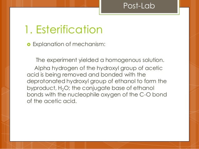 fischer esterification lab Benzocaine synthesis via fischer esterification xiang yu march 24th, 2012introduction synthesis of esters has played a significant role .