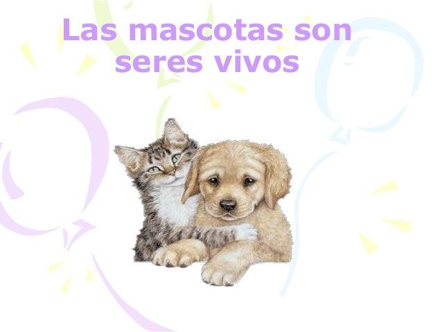 Las mascotas son seres vivos
