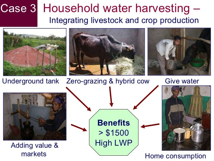 water problem and its implications on But the problem is much larger, and with greater implications than just the  occasional drought in china soaring demand and insufficient supply.