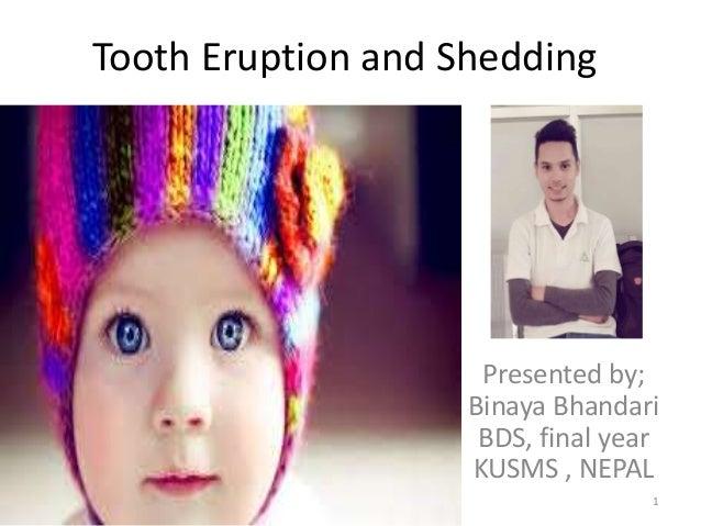 Tooth Eruption and Shedding Presented by; Binaya Bhandari BDS, final year KUSMS , NEPAL 1