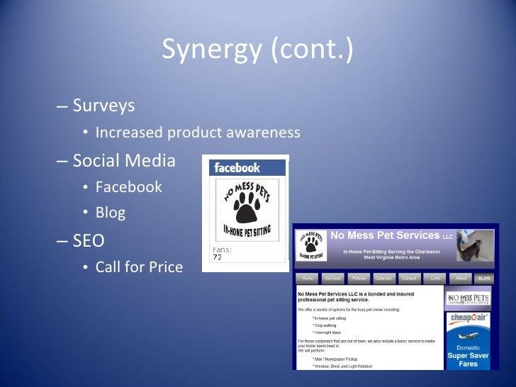 Synergy (cont.) <ul><ul><li>Surveys </li></ul></ul><ul><ul><ul><li>Increased product awareness </li></ul></ul></ul><ul><ul...