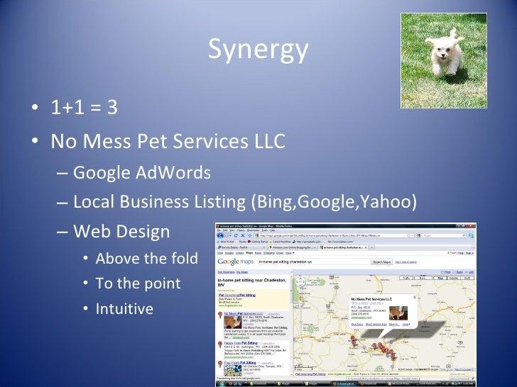Synergy <ul><li>1+1 = 3 </li></ul><ul><li>No Mess Pet Services LLC </li></ul><ul><ul><li>Google AdWords </li></ul></ul><ul...