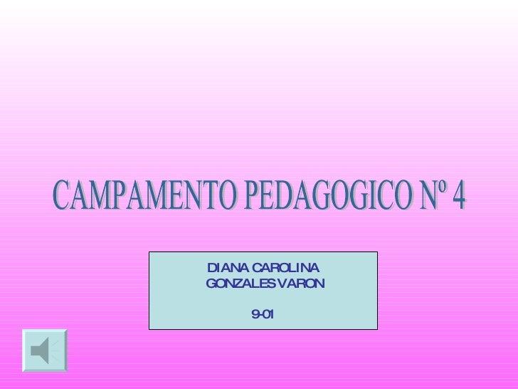 CAMPAMENTO PEDAGOGICO Nº 4 DIANA CAROLINA GONZALES VARON 9-01