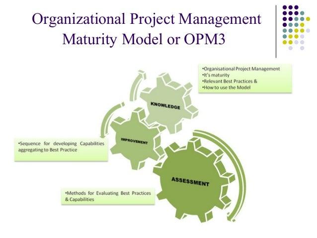 Kerzner project management maturity model