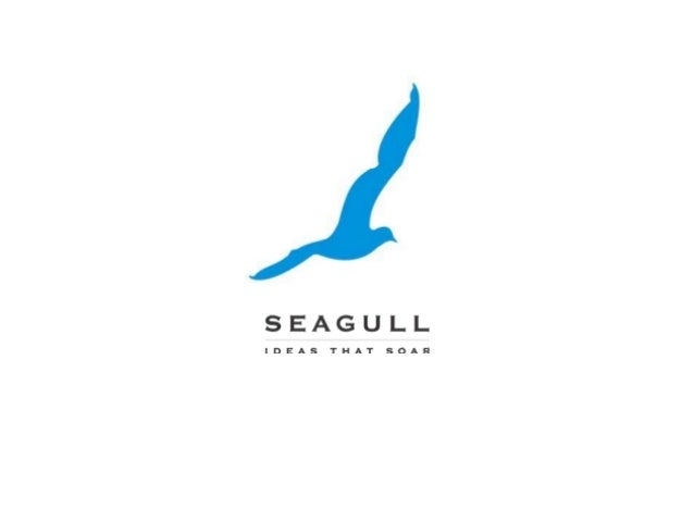 What is advertising?  What is an advertising agency?  What does Seagull Advertising do?  What are the various departments ...