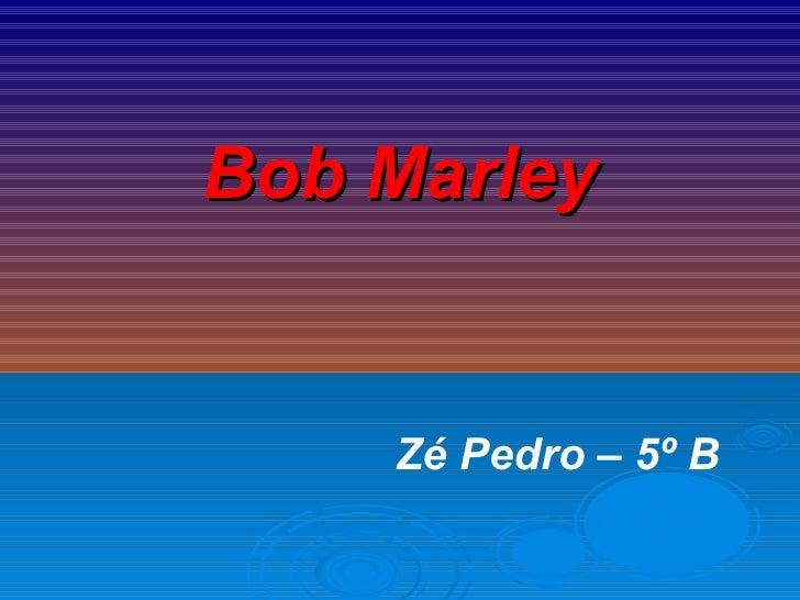 Bob Marley Zé Pedro – 5º B