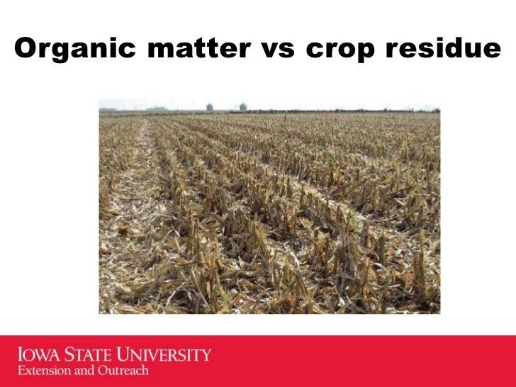 Crop management dr robert g hartzler iowa state for Mineral soil vs organic soil