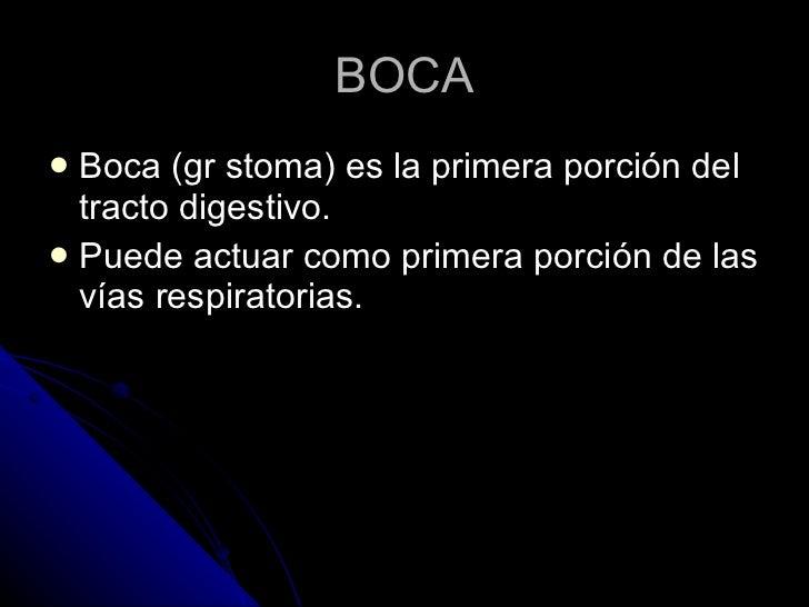 BOCA <ul><li>Boca (gr stoma) es la primera porción del tracto digestivo. </li></ul><ul><li>Puede actuar como primera porci...