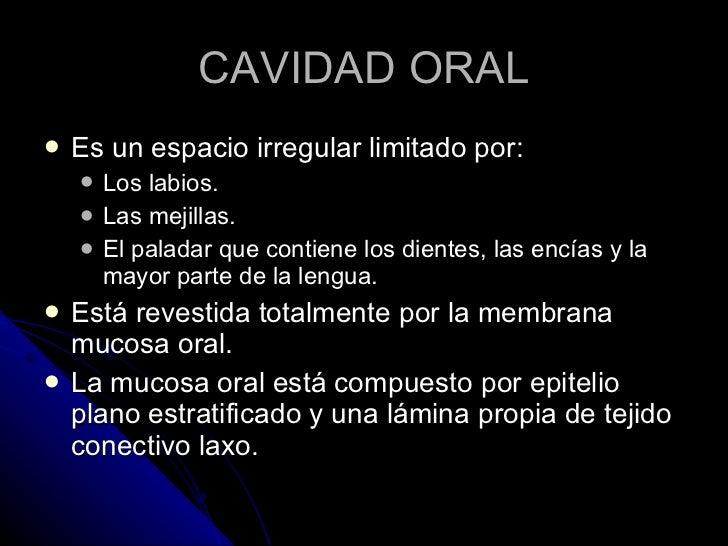 CAVIDAD ORAL <ul><li>Es un espacio irregular limitado por: </li></ul><ul><ul><li>Los labios. </li></ul></ul><ul><ul><li>La...
