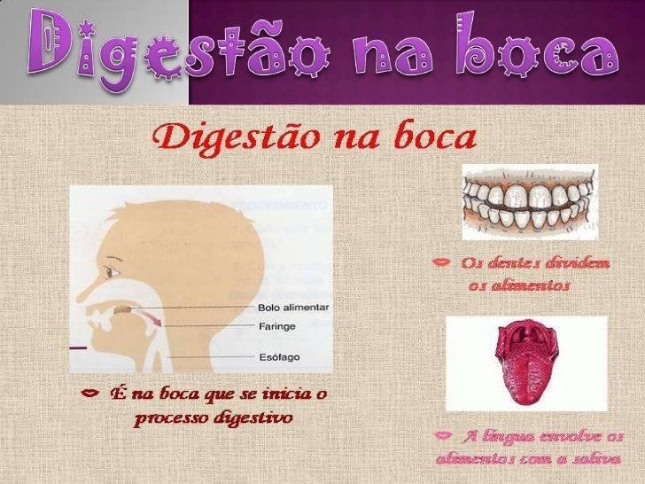 Digestão na bocaNa boca é onde a digestão começa.A boca é constituída por: osdentes e a língua . As glândulassalivares env...