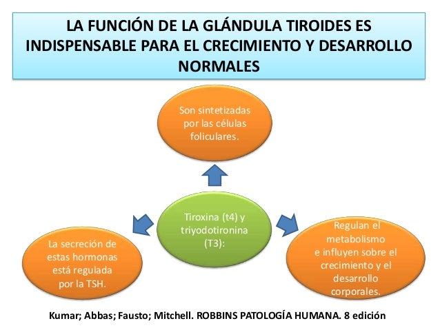 BOCIO COLOIDE El crecimiento del tiroides, o bocio, es la manifestación más frecuente de la enfermedad tiroidea. Los bocio...