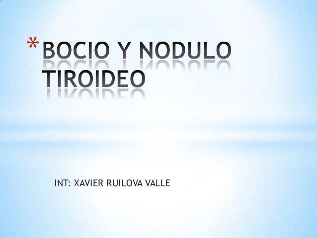 INT: XAVIER RUILOVA VALLE *