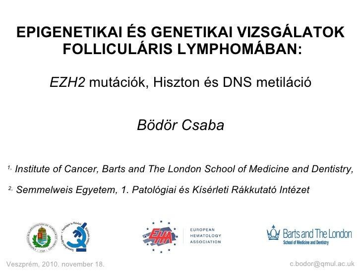 EPIGENETIKAI ÉS GENETIKAI VIZSGÁLATOK  FOLLICULÁRIS LYMPHOMÁBAN: EZH2  mutációk, Hiszton és DNS metiláció Bödör Csaba [ema...