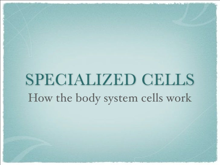SPECIALIZED CELLS How the body system cells work
