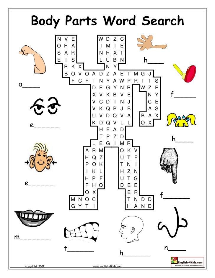 Body Parts Word Search                        N   V   E           W    D    Z    C                        O   H   A       ...