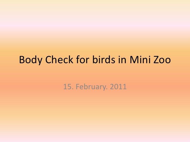 Body Check for birds in Mini Zoo<br />15. February. 2011<br />