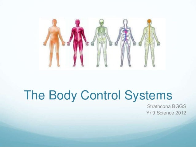Body control systems nervous system