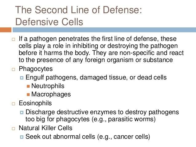Defense Mechanisms Worksheets 0425